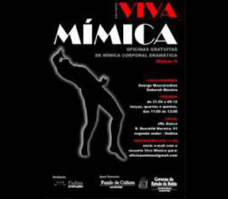 Viva mímica 2010